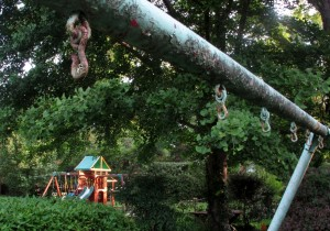 swing set two (2)
